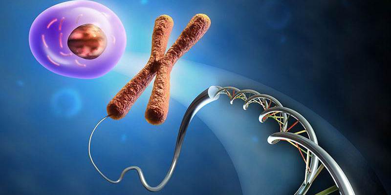 新PAR-4抑制剂可治疗血液和凝血功能疾病