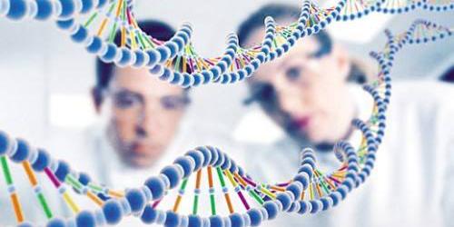 地塞米松:可能成为前列腺癌治疗药物?