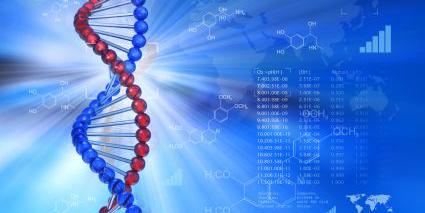 自杀基因疗法:可杀死前列腺癌细胞!