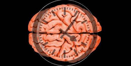 新疗法MultiStem治疗缺血性脑卒中潜在效果卓越