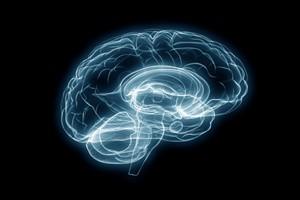 表观遗传学临床研究专注于阿尔茨海默病潜在靶向药物