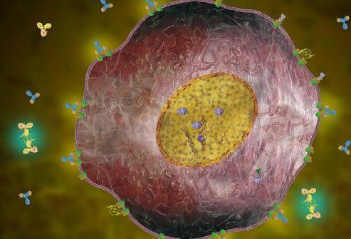 乳腺癌治疗新药Lynparza获FDA优先审查权