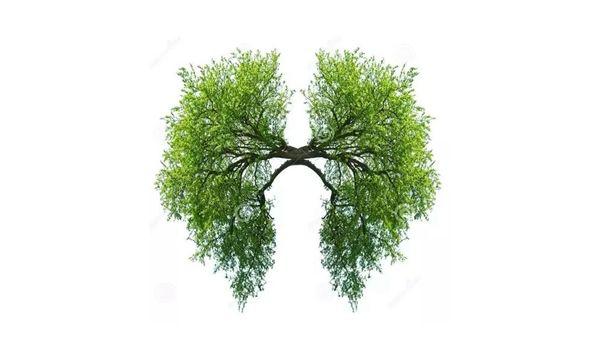 FDA批准靶向药Iressa对转移性肺癌患者的一线治疗